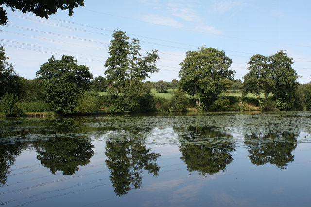 MILL POND AUGUST